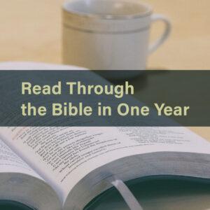 2021: Read the Bible Through