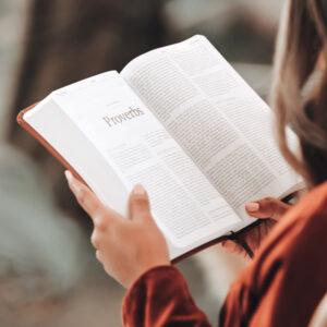 Wednesday Night: Pastor's Bible Study